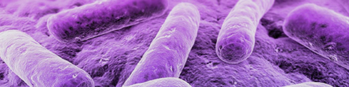 MERS Virüsü Hakkında Bilgilendirme