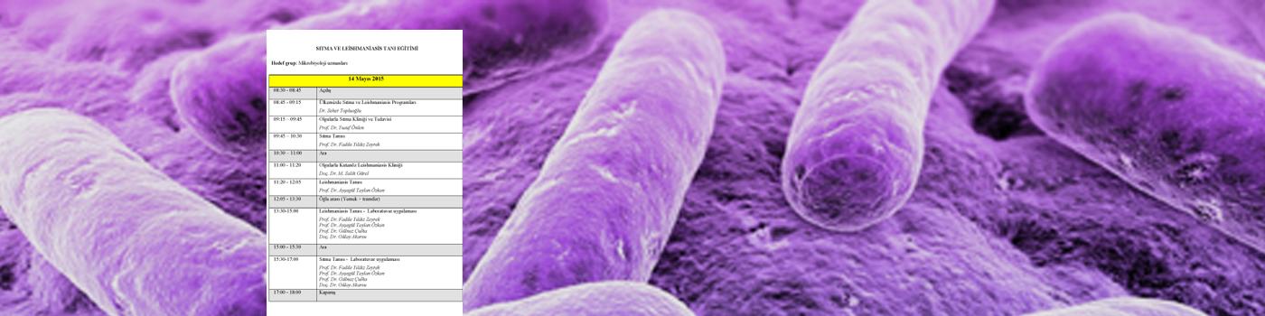 Sıtma ve Leishmaniasis Uygulamalı Tanı Eğitimi