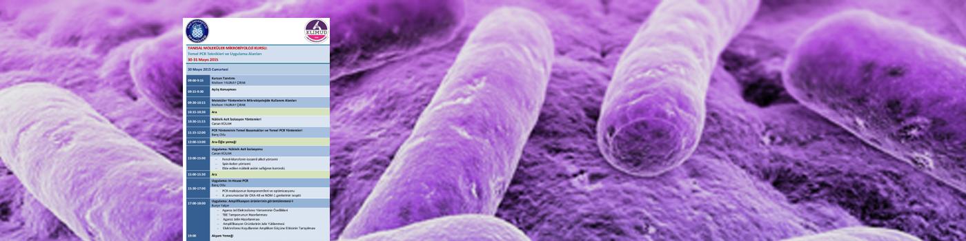Tanısal Moleküler Mikrobiyoloji Kursu-Temel PCR Teknikleri ve Uygulama Alanları