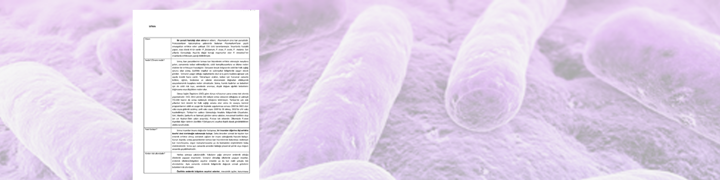 Sıtma Bilgilendirme Yazısı
