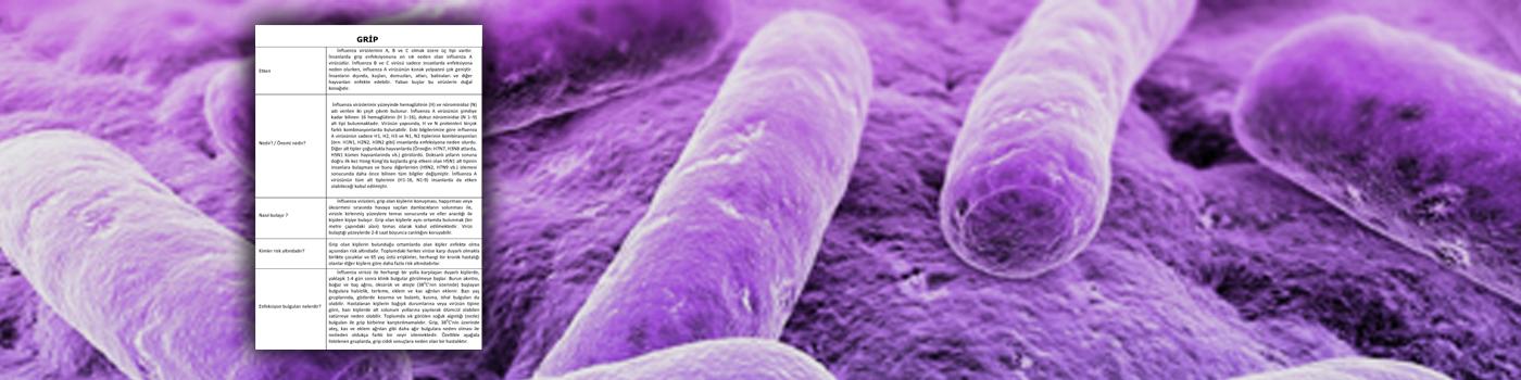 İnfluenza Bilgilendirme Notu