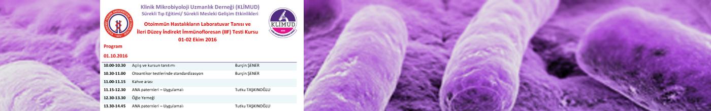 Otoimmün Hastalıkların Laboratuvar Tanısı ve İleri Düzey İndirekt İmmünofloresan (IIF) Testi Kursu