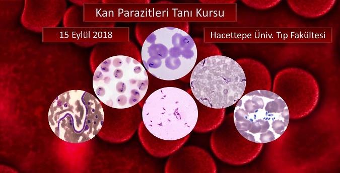 Kan Parazitleri Tanı Kursu