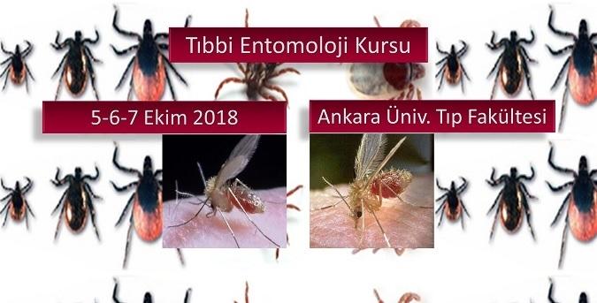 Tıbbi Entomoloji Kursu