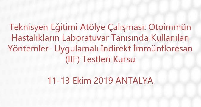 Teknisyen Eğitimi Atölye Çalışması: Otoimmün Hastalıkların Laboratuvar Tanısında Kullanılan Yöntemler- Uygulamalı İndirekt İmmünfloresan (IIF) Testleri Kursu