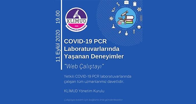 COVID-19 Laboratuvarlarında Yaşanan Deneyimler - KLİMUD Web Çalıştay Raporu